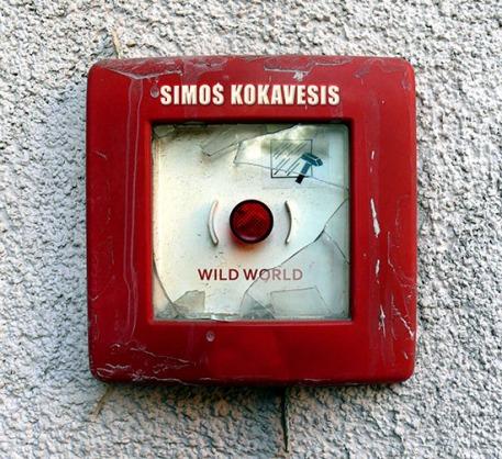 Simos-Kokavesis-Wild-World-cover-sm